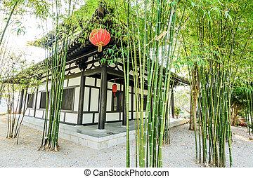 竹, 庭, 中国語, 現場