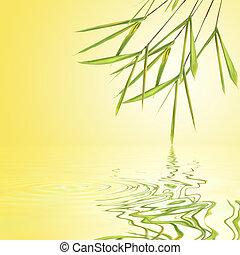 竹, 草, 葉, 美しさ