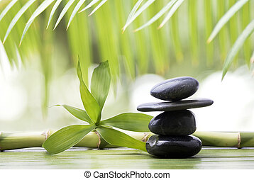 竹, wellness, 黒, 石, 環境