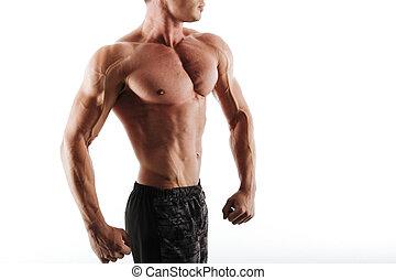 筋肉, 人, 切り取った, 若い, 白い背景, 隔離された, 写真