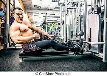 筋肉, 時制