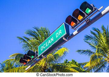 签署, 南方, 迈阿密, 街道, 大海, 著名, drice