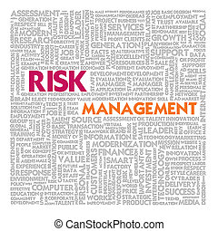 管理, 単語, 金融, ビジネス 概念, 雲, 危険