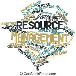 管理, 資源