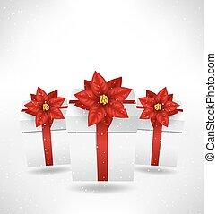 箱子, 一品紅, grayscale, 禮物