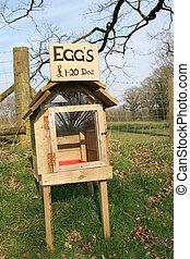 箱, 卵, 正直