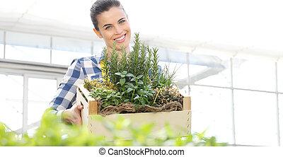 箱, 概念, 庭, フルである, 木製である, 春, ハーブ, 女性の 微笑, 白い背景, スパイス