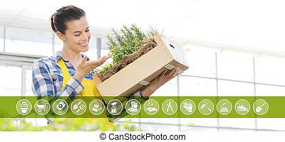 箱, 装置, 女, 園芸, 庭, フルである, インターネット商業, 木製である, 春, アイコン, ハーブ, 概念, 微笑, 白い背景, スパイス