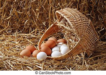 篮子, 溢出, 蛋