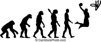 籃球, 演化