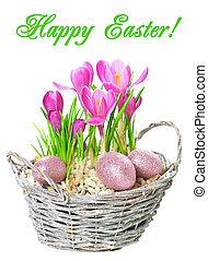 粉紅色, 春天, 蛋, 番紅花, 裝飾, 花, 晴朗, 復活節