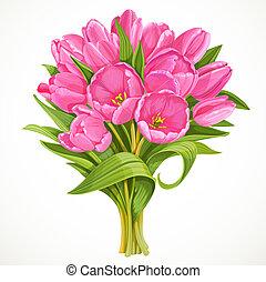 粉紅色, 花束, 鬱金香, 被隔离, 背景, 白色