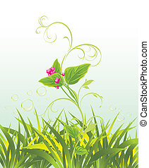 粉紅色, 花, 草,  sprig