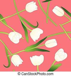 粉紅色, 郁金香, 插圖, 背景, 矢量, 白色