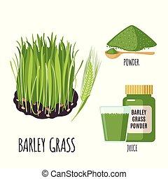 粉, ジュース, 隔離された, スタイル, 草, セット, 平ら, white., 大麦, 緑