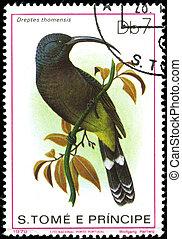 "系列, 葡萄牙, 郵票, 1979, thomensis"", portugal-, 鳥, 列印, 1979:, 圖畫,..."
