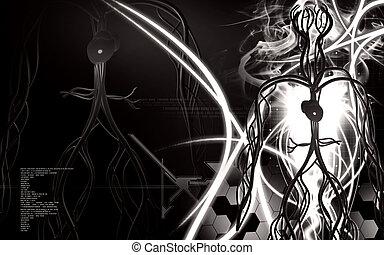 系統, 血管