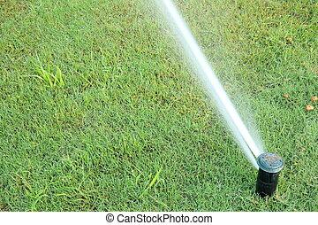 系统, 浇水, 自动, 绿色