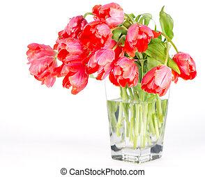 紅色的郁金香, 花, 在, a, 玻璃瓶