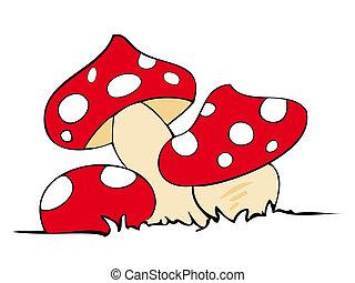 紅色, 毒物, mushrooms.
