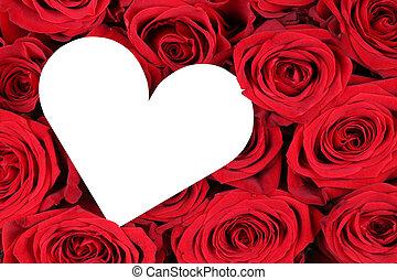 紅色 玫瑰, 由于, 心, 如, 愛的符號, 上, 情人節