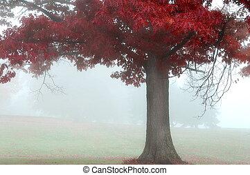 紅色, 秋天