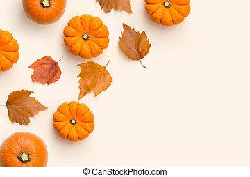 紅葉, カボチャ, 構成, 秋