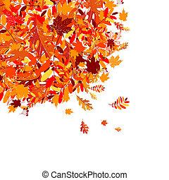紅葉, デザイン, あなたの, 背景