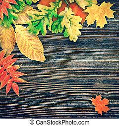 紅葉, 上に, a, 木製である, 背景