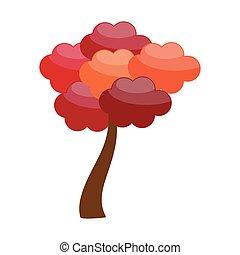 紅葉, 木