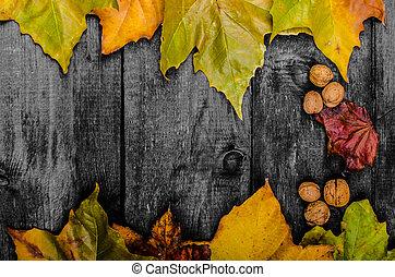 紅葉, 木, 板