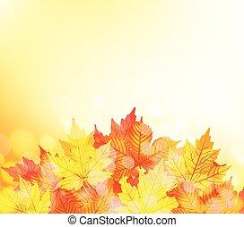 紅葉, 背景
