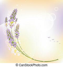 紫色の 花, ラベンダー, カード, 挨拶