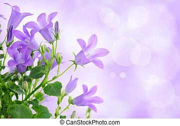 紫色の 花, 背景