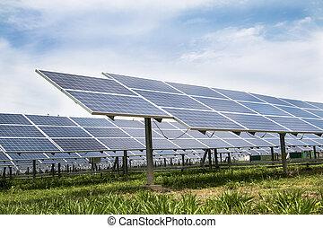 細胞, 農場, パネル, 太陽