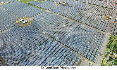 細胞, 農場, 太陽