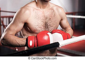 終わり, の, ボクサー, 身に着けていること, ボクシング用グラブ