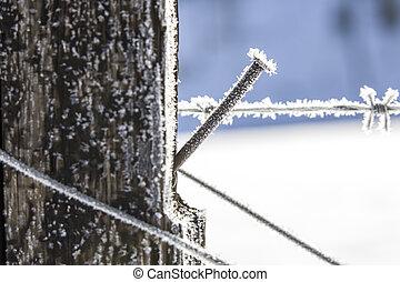 終わり, 霜, の上, wire.
