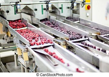 結冰, 木莓, 處理, 事務