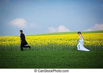 結婚, 夫婦, 新郎, -, 年輕, 新娘, 新鮮地, 婚禮