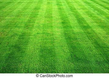 綠色的保齡球, 草, 背景。