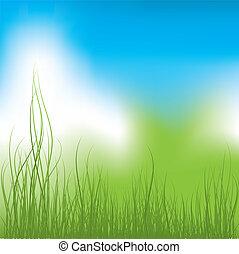 綠色的草, 以及藍色, sky., 矢量