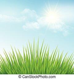 綠色的草, 以及藍色, sky., 矢量, 插圖