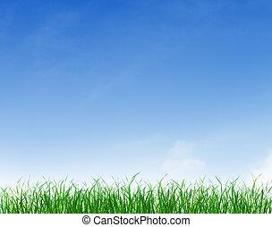 綠色的草, 在下面, 藍色, 清楚的天空