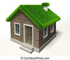 綠色的草, 屋頂, 房子