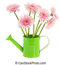 綠色, 噴壺, 由于, 花
