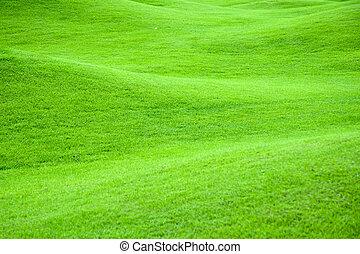 綠色, 牧場, 2