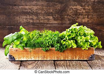 綠色, 藥草, 在, 木盒