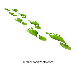 綠葉, 腳舉步, 被隔离