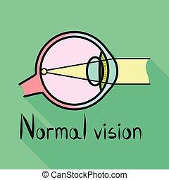 網, アイコン, デザイン, ベクトル, 器官, 視力, stock., icon., 眼球, 要素